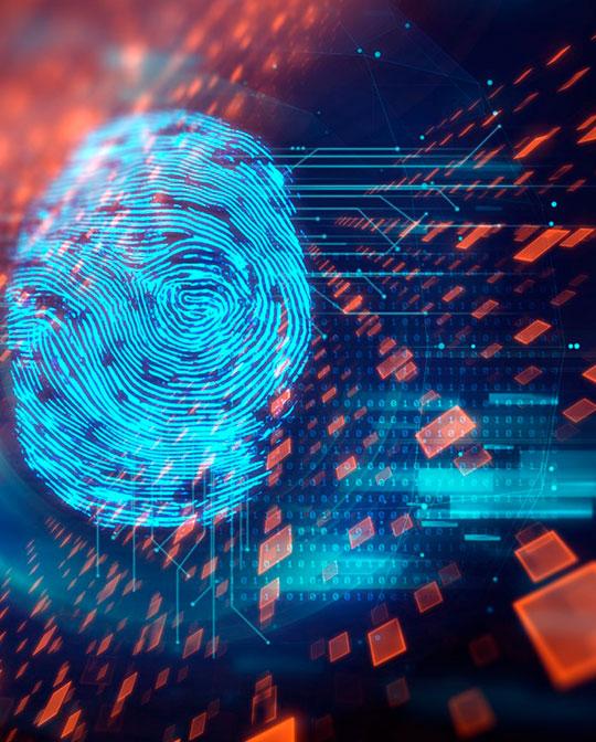 cybercrime-picture01